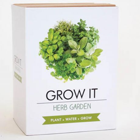 Grow It - Herb Garden Planting Starter Set